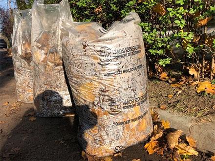 Változás a zöldhulladék gyűjtő zsákok árában